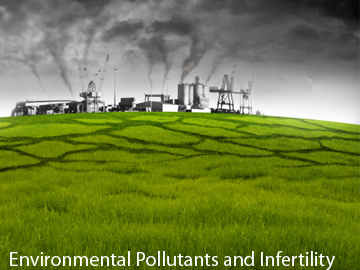 Environmental Pollutants and IVF Treatment in Delhi