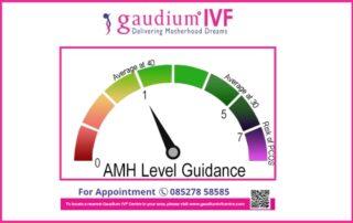 AMH-Levels-Affect-Fertility