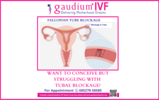 Fallopian Tube Blockage